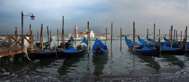 Venise - 2011